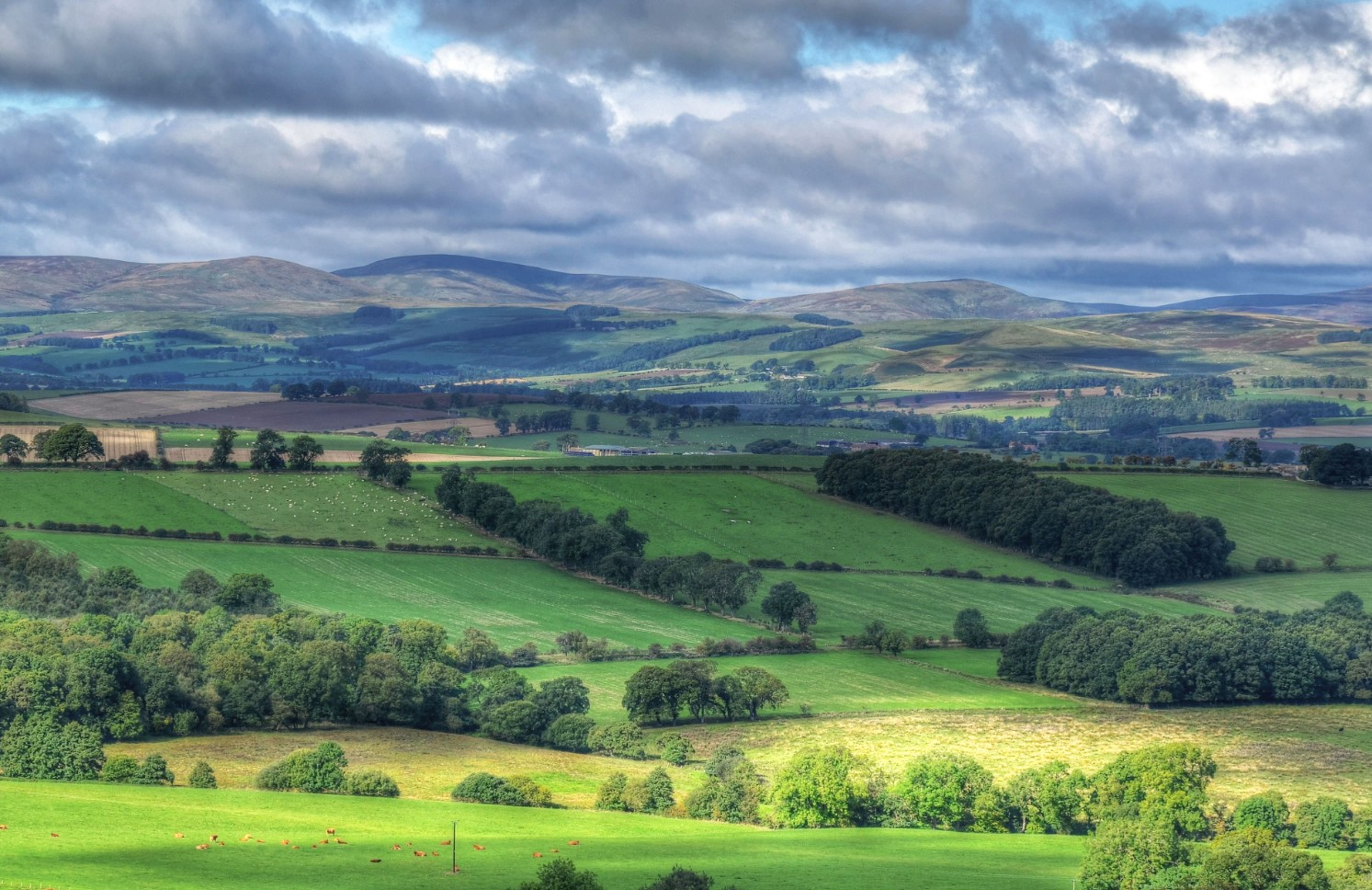 View of Cheviot hills from new house development Lowick Northumberland called Village Meadows
